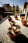 Title : Tombe fleurie, cimeti?re St Vincent, ? Montmartre, Paris, Avril 2006. camera :  'Zero Image' 6x9 pinhole (st?nop?) Max. Print Size : 6888x10332 pixels (68x103 cm.) Author : Pascal Labrouill?re  Views: 2216 Date: 01.04.06 800x1200 (885.3 KB)